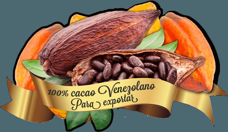 Exportar Cacao Venezolano EL MEJOR CACAO DEL MUNDO